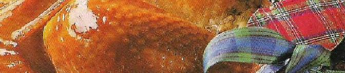 kalkonheader