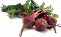 CDC_beets