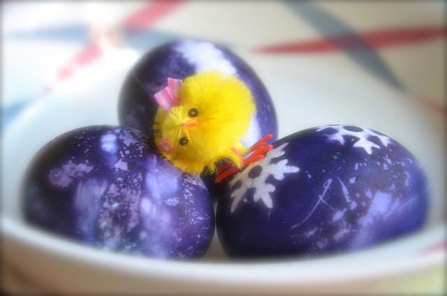Så här vacker färg får äggen om du lägger dem i färgbad med blåbär!
