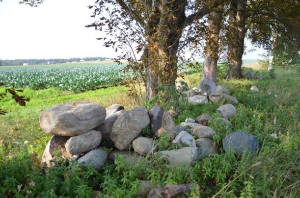 Per Nilssons dödsstraff omvandlades till livstids fängelse. Efter 23 års avtjänat straff blev han benådad och bosatte sig i Härnestad. Här, intill kastanjerna, låg hans hus och kanske är några av stenarna en del av husgrunden.