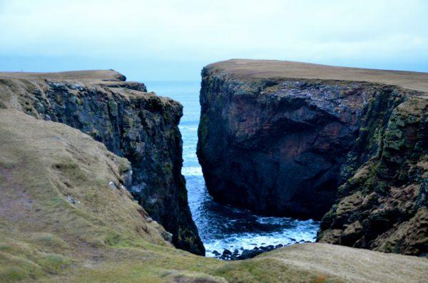 Kolja som på Shetlandsöarna