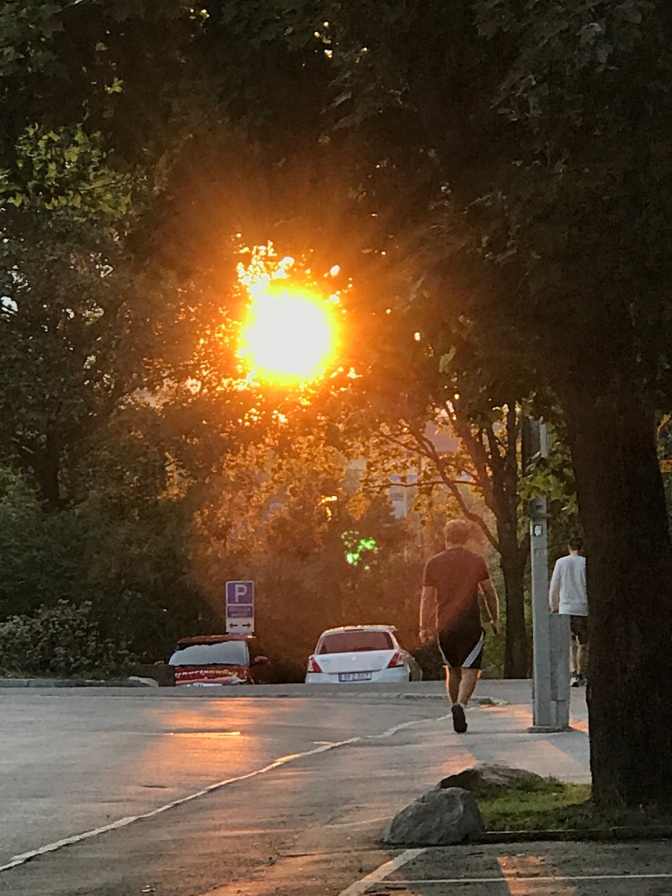 Solnedgång över Högdalen