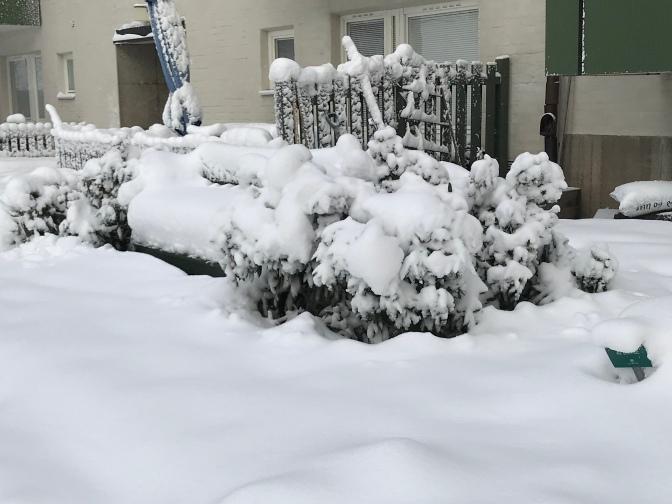 Vintervärlden